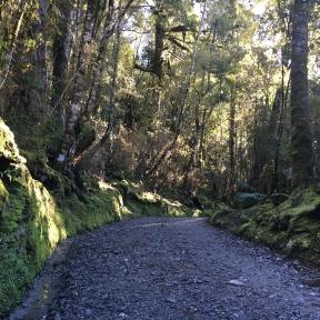 NZ 2016 iPhone-182